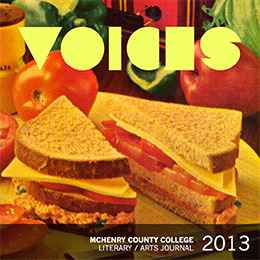 2013 Voices cover image