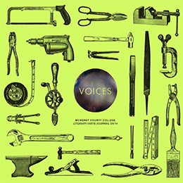 2014 Voices cover image