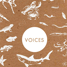 2015 Voices cover image
