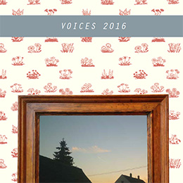 2016 Voices cover image