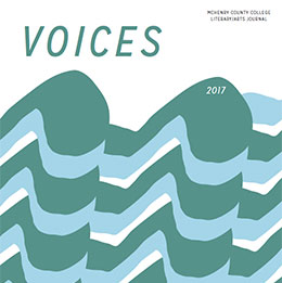 2017 Voices cover image